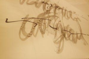 Exposición caligrafías extrañas, de Leandro Alonso